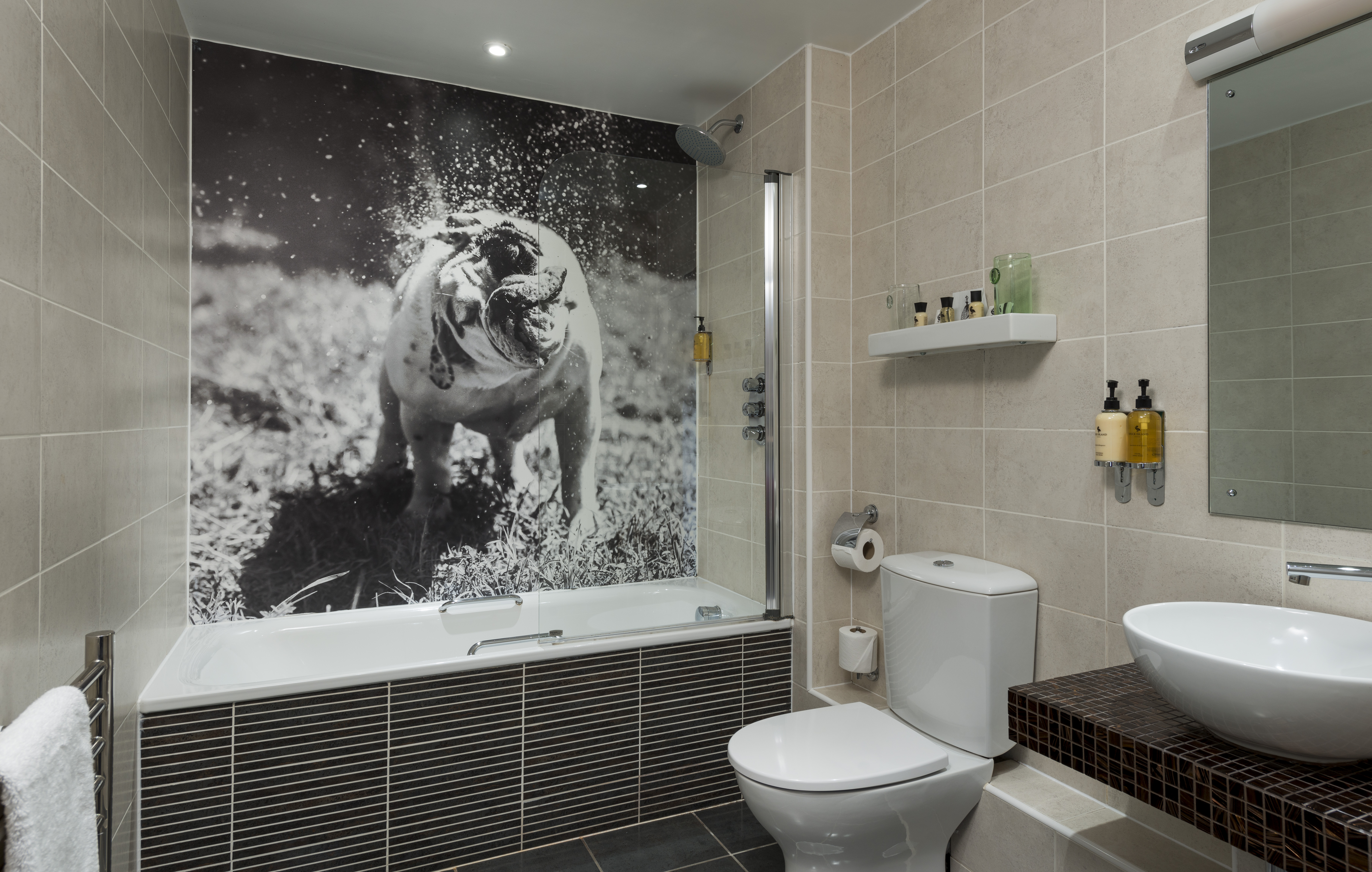 A Standard Bathroom